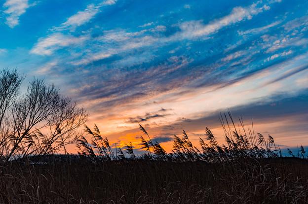 晩秋の落陽