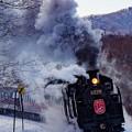 Photos: SL 冬の湿原号