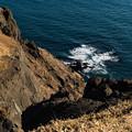 写真: 岬から