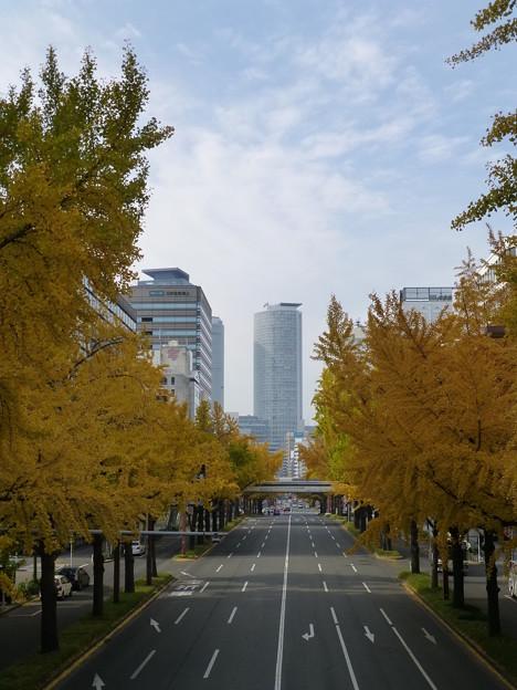 20121127桜通(名古屋駅付近)