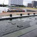 写真: 20171004中川運河(1)