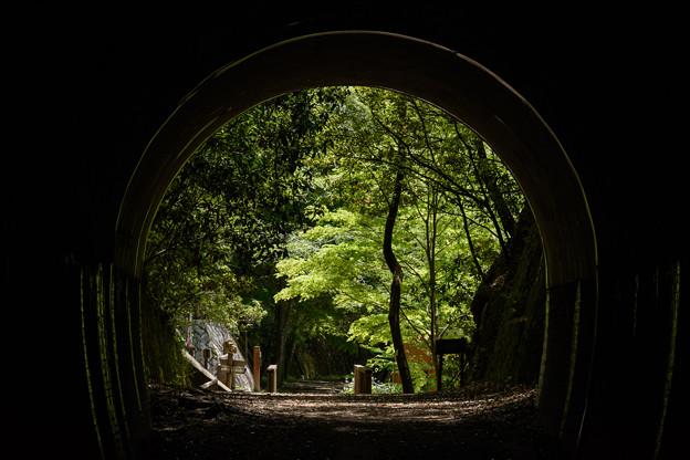 トンネルの中から