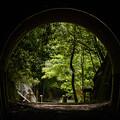 写真: トンネルの中から