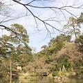 写真: 金澤兼六園