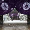 写真: 西本願寺29