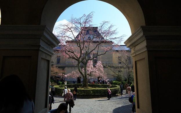 京都府庁・旧本館28