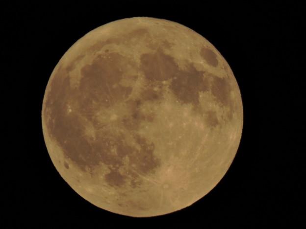 Photos: full_moon