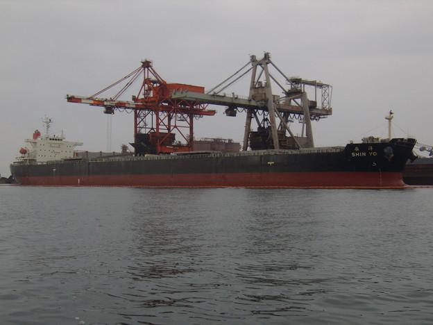 Bulk carrier - SHIN YO