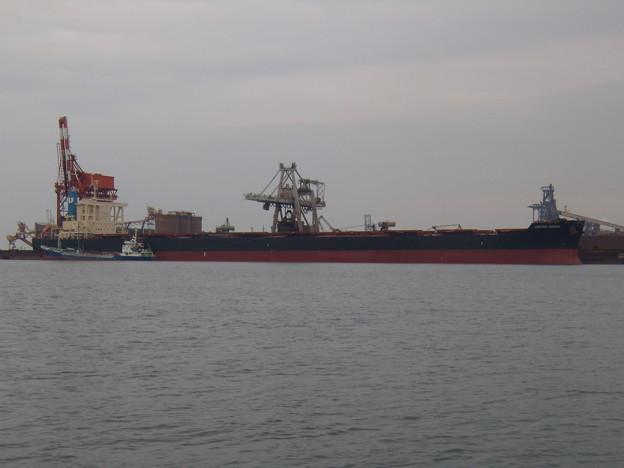 Bulk carrier - UNITED CROWN