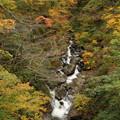 写真: 渓流と紅葉
