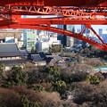 Photos: 足元から望む増上寺
