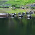 碓氷湖(7)
