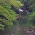 川の表情 (5)