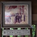 写真: 東郷神社 (2)