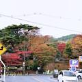 Photos: 正面は松島観瀾亭