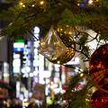 写真: 歌舞伎町のXmasツリー