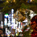 Photos: 歌舞伎町のXmasツリー