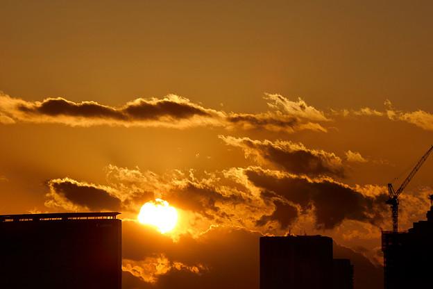 お台場の夕陽