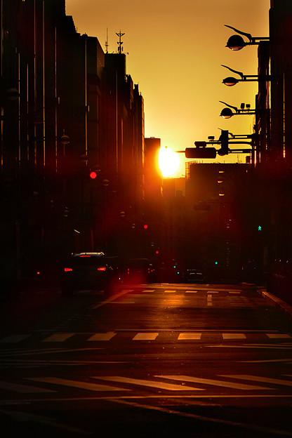 朝の新宿通り