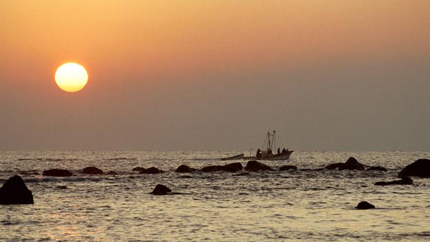 真鶴港の日の出
