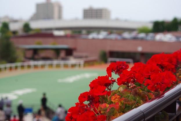 写真: 札幌20170902_27