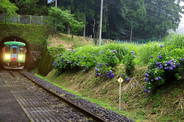 樽見鉄道・日当駅(1)