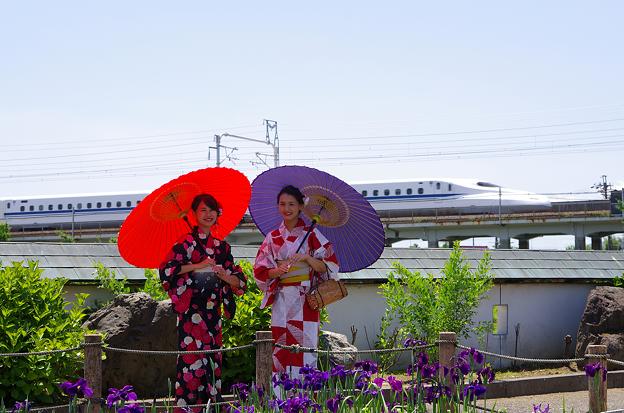 花しょうぶまつり(9)