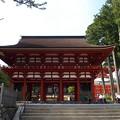 高野山中(ちゅう)門