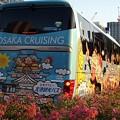 写真: 大阪クルージングバス 888