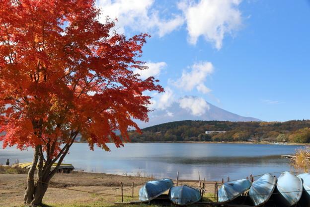 富士と紅葉1