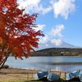写真: 富士と紅葉1