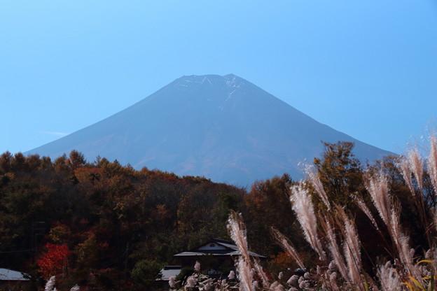 写真: 忍野からの富士山3