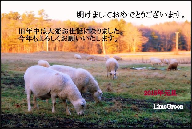 New Year Card_Kura 2015