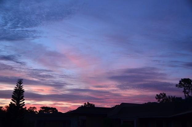 Photos: The Dawn 6-13-17