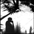 Shadows 6-25-17