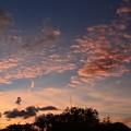写真: Evening III 8-14-17