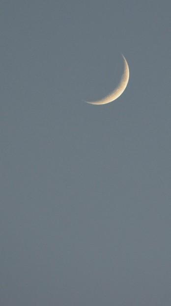写真: The Crescent Moon 9-23-17