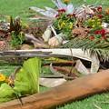 写真: The Debris and the Flowers 10-1-17
