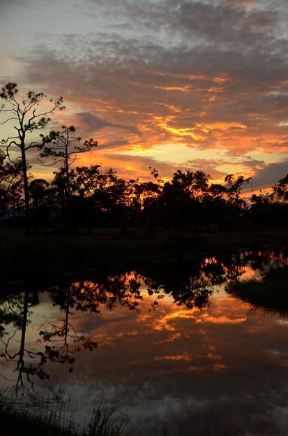 写真: The Sunset 11-26-17