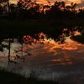 Photos: The Canal 11-26-17
