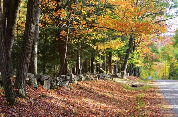 写真: Beloved Stone Walls 10-19-17