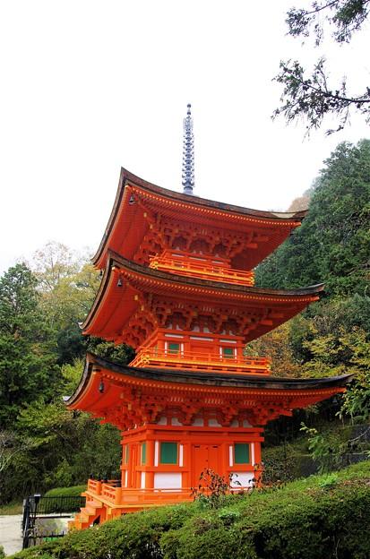氷雨降る美作長福寺三重塔
