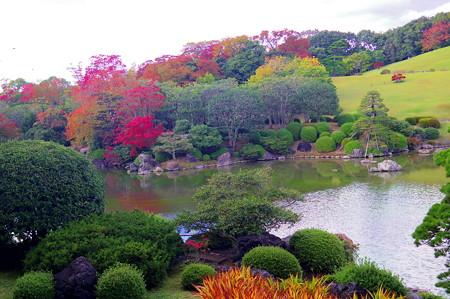 万博記念公園 (41)