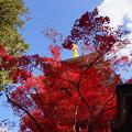 写真: 赤い衣と青い空と白い雲