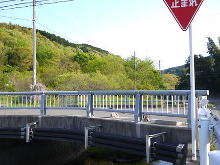 橋とビーグル@ビーグルがいる南箱根の景色