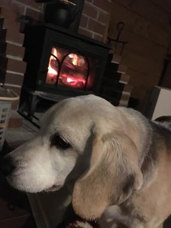 冷えたら薪ストーブで温めるだね!