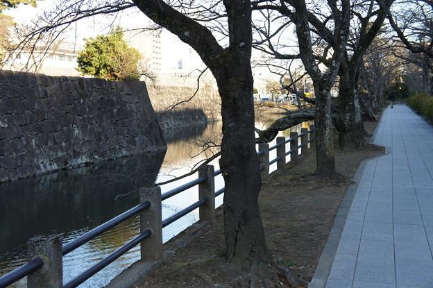 小田原城13