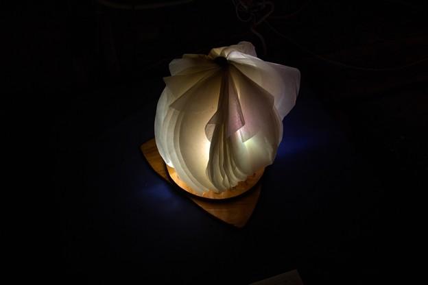 写真: 美濃和紙あかりアート展作品