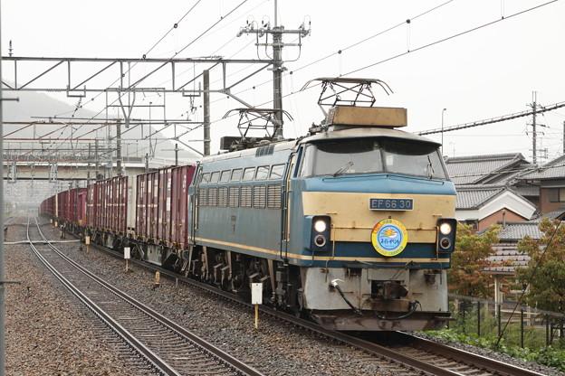 EF66-30(広島公開ヘッドマーク)
