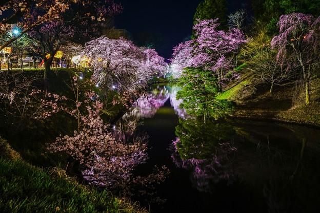 写真: 上田千本桜